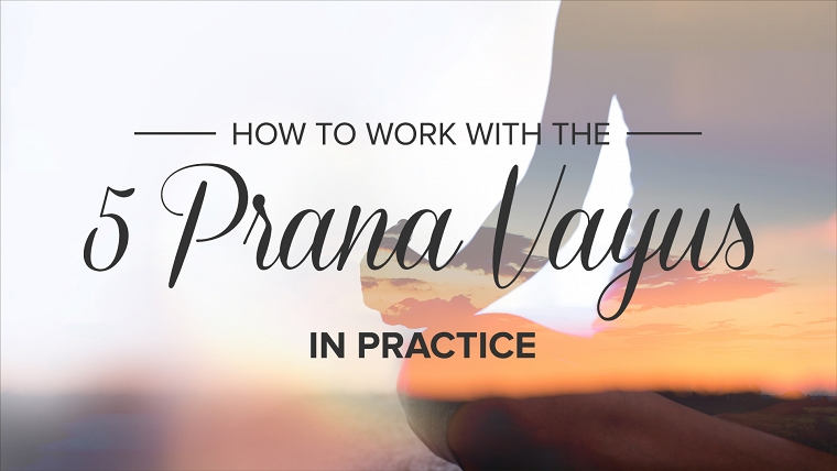 How to Work With the 5 Prana Vayus in Practice